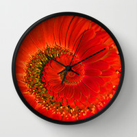 Red Gerbera Spiral Wall Clock by Karl Wilson Photography
