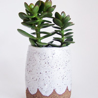 Scalloped Pottery Planter - Stoneware Planter - Speckled Planter - MADE TO ORDER
