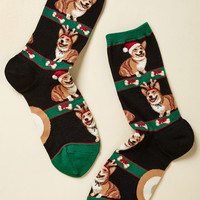 'Tis the Season to Be Corgi Socks