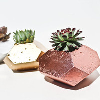 The Indigo Geometric Concrete Planter, Metallic Copper, Silver, Gold, Perfect for your Cacti and Succulents, Home Decor