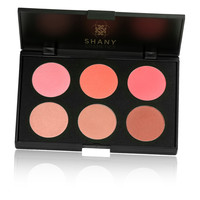 Fuchsia 6 blush Palette Makeup Kit