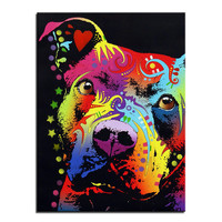 Mr Innocent Pitbull Multi Color Canvas Picture