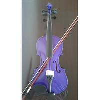 Student Acoustic Violin Full 3/4 Maple Spruce with Case Bow Rosin Purple Color