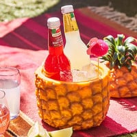 Pineapple Ice Bucket - Urban Outfitters