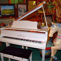 White Baby Grand Piano, Young Cheng