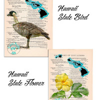 Hawaii State Map plus State Bird & State Flower Drawing Art Beautifully Upcycled Vintage Dictionary Page Book Art Print