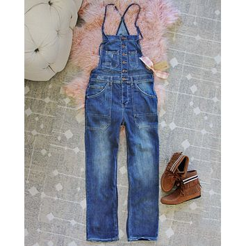 Painters Overalls