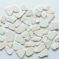 Bulk Beach Pottery Sea Pottery 53 pcs