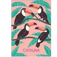Personalize 2015-2016 Toucans Custom Planner | Paper Source