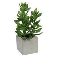 Artificial Jade in Square Cement Pot - Medium - Threshold™