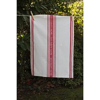 Bon Appetit Towels in Red (Set of 4)