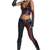 Arkham City Harley Quinn Adult Costume