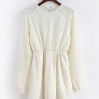 Long Sleeve Shirtwaist A-line Lace Pleated Mini Dress
