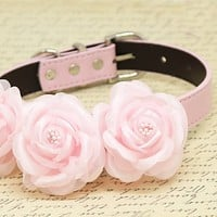 Pink Floral wedding Dog Collar, pets accessory, pink lovers, birthday gifts, Pink Rose Flowers , Wedding dog collar
