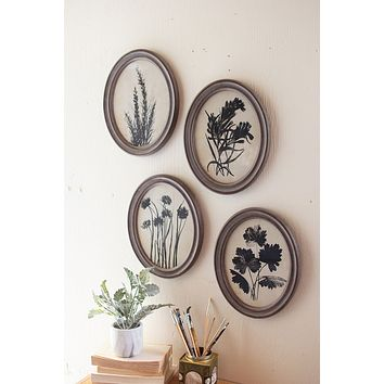 Set Of 4 Oval Botanical Prints Under Glass