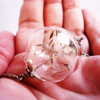 Real Dandelion Seed Glass Orb Necklace In Silver Large Orb, Lucky You