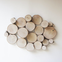 natural white birch forest topography wall sculpture - wood slices wall art, wood wall decor, modern rustic, tree branch wall hanging