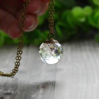 Glass Dandelion Real Seed Globe Pendant Necklace, Glass Orb Pendant