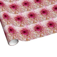 Magenta and white dahlia close up wrapping paper