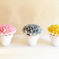 mothers day Pastel Flower Sculpture trio in white containers, Modern Floral Arrangement, Wedding favors, decorative item