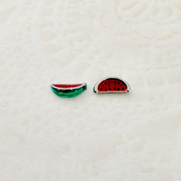 Floating charms for living locket watermelon