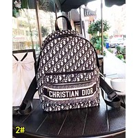 Dior Hot Sale Classic Canvas  Daypack School Bag Bookbag Backpack 2#