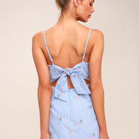 Fairgrounds Light Blue and White Gingham Embroidered Dress