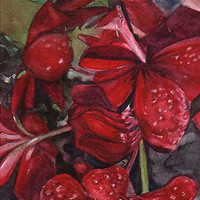 Geranium Watercolor Reproduction -Red Flower Print- 7x10- Realistic Still Life- Floral Close-up