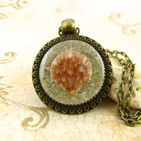 Scallop Seashell Pendant Necklace with Sand and Shell from Sanibel Florida