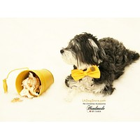 Yellow Dog Bow Tie collar, Pet wedding accessory, Dog collar