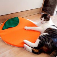 Orange cat bed with catnip pet mat cat pad cushion pillow comfort nap fruit bed soft bed cotton fabric non slip round bed round pet gift