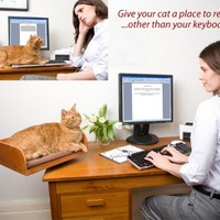 Cat Bed For Desktops, Novelty Cat Bed - Opulentitems.com