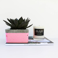 Pink Square 'Pop of Colour' Grey Concrete Planter