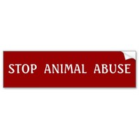 STOP ANIMAL ABUSE Bumper Sticker