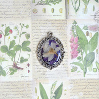Real flower pendant with chain - pressed flower pendant -delphinium flower - handmade pendant - EСO style Jewelry - p0010-3