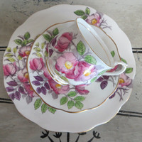 Vintage Royal Albert Bone China Teacup Flower of the Month Series Dog Rose June Birthday Gift Cottage Chic Floral Tea Cup Cup and Saucer