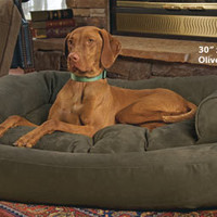 Dog Beds: Sofas: Overstuffed Luxury Sofa | Drs. Foster and Smith