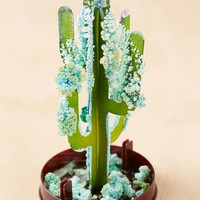 DIY Crystal Saguaro Cactus Grow Kit - Urban Outfitters