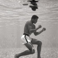 Ali Underwater Wall Poster