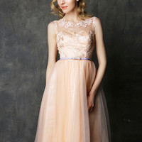 Champagne Floral Embroidered Sheer Panel Midi Dress