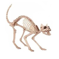 Skeleton Cat 100% Plastic Animal Skeleton Bones for Scary Halloween Decoration