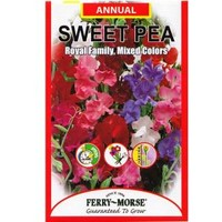 Ferry-Morse, Sweet Pea Royal Family Mixed Color Seed, 1938 at The Home Depot - Mobile