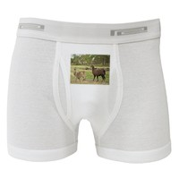 Standing Llamas Boxer Briefs  by TooLoud