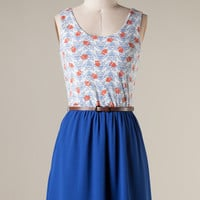 You're a Hoot- Belted Owl Print Sundress