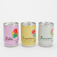 Urban Outfitters - Flowers-In-A-Can