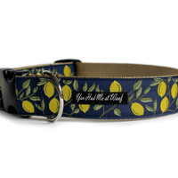 Lemons on the Promenade Dog Collar