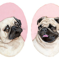 Pugs watercolor illustration portrait print pink