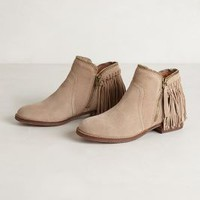 Dally Fringe Boots by Dolce Vita
