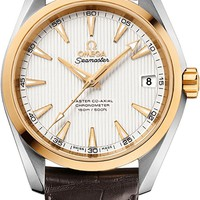 Omega Seamaster Aqua Terra Men's Watch 231.23.39.21.02.002