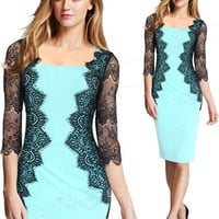 Sheer Mesh Sleeves Lace Embroidered Sheath Dress